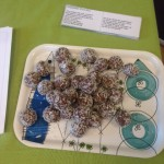Vanliga chokladbollar med extra protein bjöd vi MASarna på.