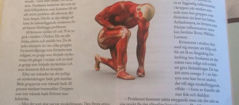 Rätt kost och träning bromsar muskelförlust